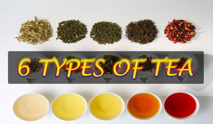 6 TYPES OFTEA